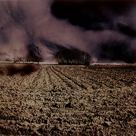 Denny Moers - Plowed Field with Windbreak
