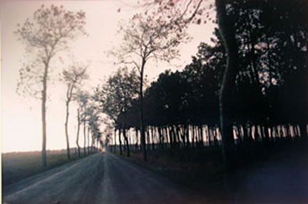 Joel  Meyerowitz - On the Road to Spain; South of France