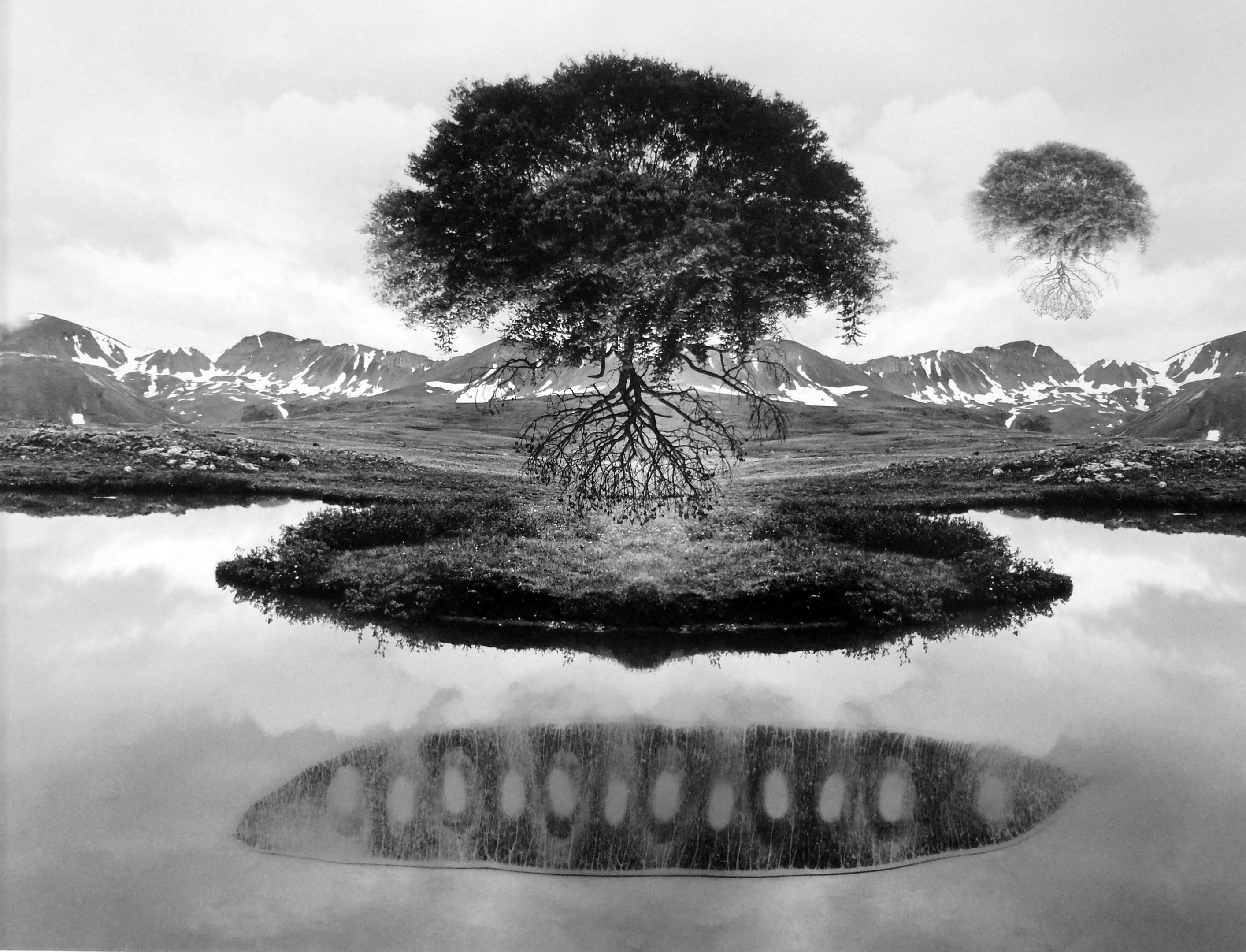Jerry Uelsmann - Untitled (Floating Trees)