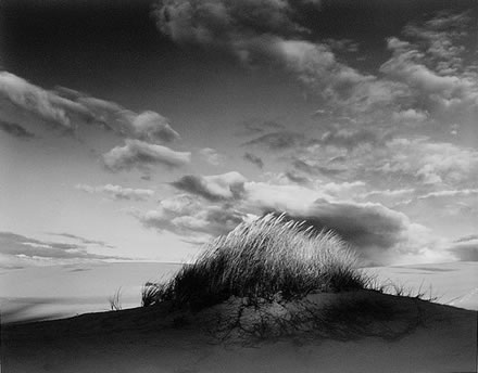 Stuart Levy - Eel Creek Dunes IV, Oregon